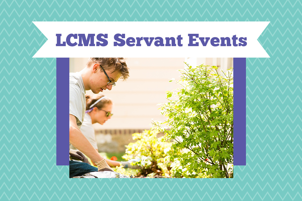 Lutheran Young Adult Servant Event — St. Louis